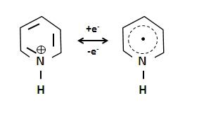 Pyridinium1